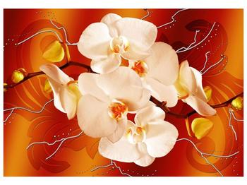 Obraz bílých orchidejí (F005694F10070)