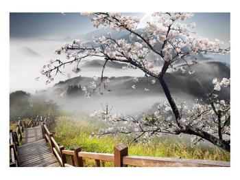 Obraz rozkvetlé jarní krajiny (K011207K10070)