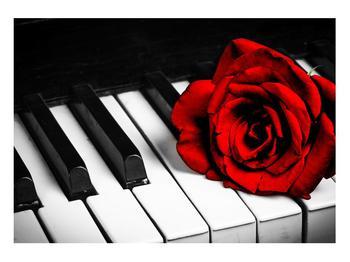 Zongora és egy rózsa képe (K011229K10070)