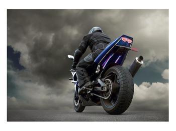 Tablou cu motociclist cu motocicletă (K011302K10070)