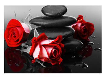 Obraz růže (K011400K10070)