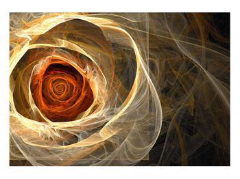Moderní obraz růže (K011479K10070)