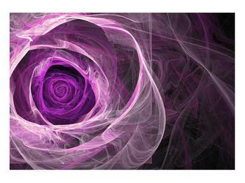 Moderný obraz fialovej ruže (K011482K10070)