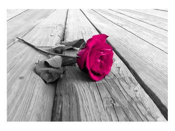 Obraz růže (K011856K10070)