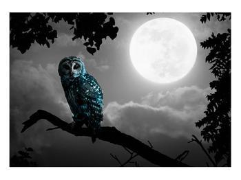 Tablou cu bufnița nocturnă (K012185K10070)