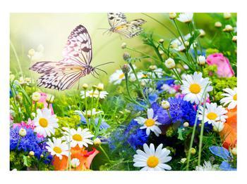 Obraz letních květů s motýlem (K012220K10070)