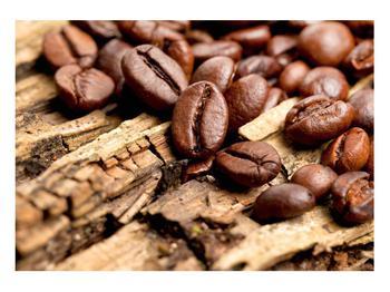 Obraz kávových zrn (K012413K10070)