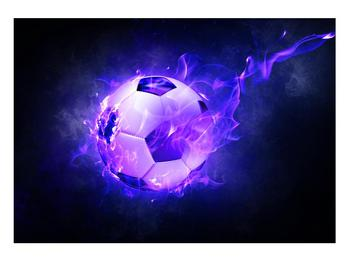 Tablou cu mingea de footbal în plasă (K014164K10070)