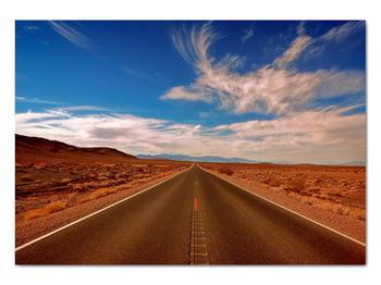Obraz dlhej cesty (V020076V10070)
