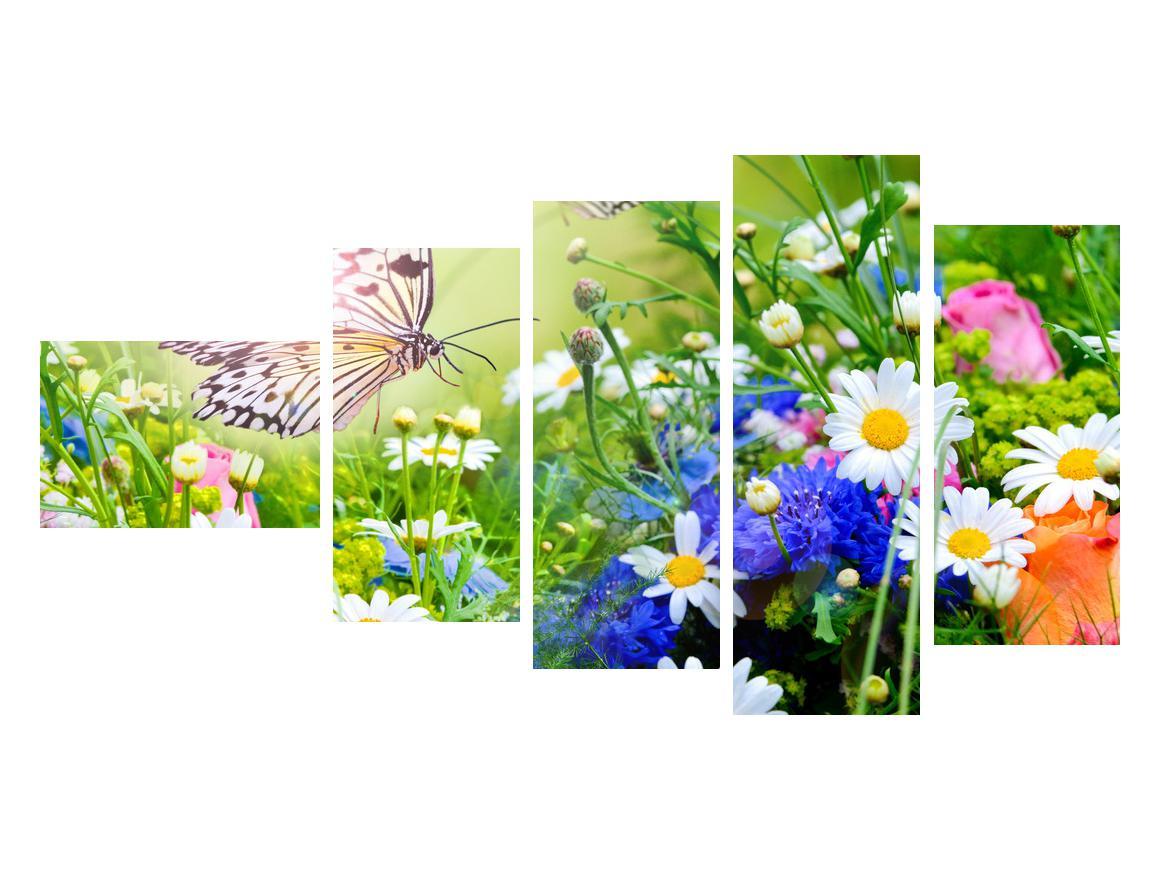 Slika poletnih cvetov z metuljem (K012220K11060)