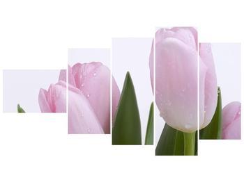Obraz růžových tulipánů (F000389F11060)