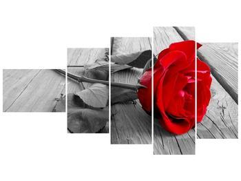 Obraz růže (F000484F11060)