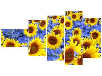 Obraz slunečnic (F000619F11060)