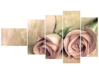 Obraz jemných růží (F001212F11060)