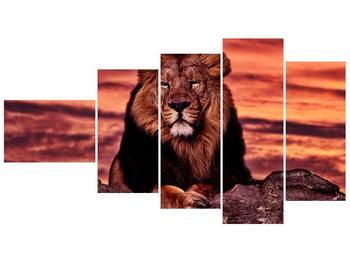 Obraz krále zvířat (F001507F11060)
