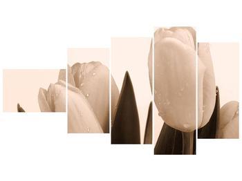 Krásný obraz tulipánů (F001883F11060)