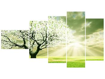 Obraz stromu na jaře (F002291F11060)