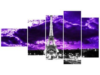 Obraz Eiffelovy věže v Paříži (F003006F11060)