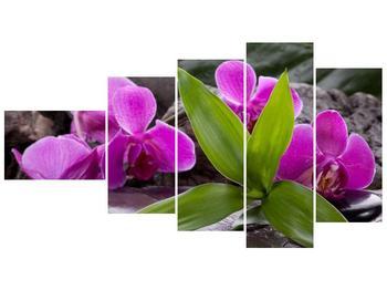 Obraz fialových orchidejí s listím (F004027F11060)