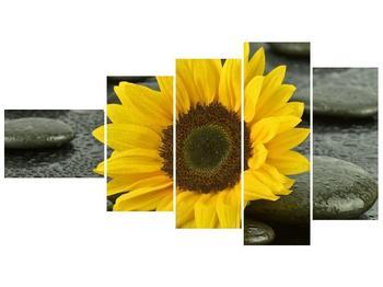 Moderní obraz F005794F11060 (F005794F11060)