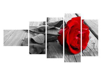 Obraz červenej ruže (K011138K11060)