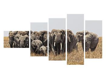 Moderný obraz na plátne K011560K11060 (K011560K11060)