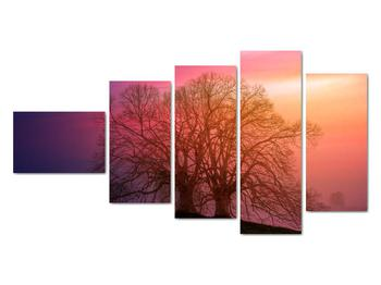 Obraz stromov v hmle (V020088V11060)