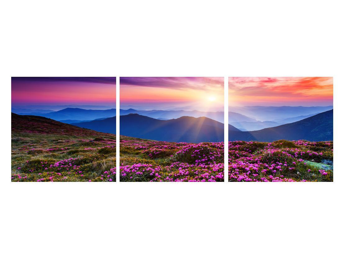 Slika planinskog rascvijetalog krajolika (K011322K12040)