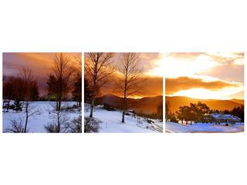Obraz zimní krajiny (F000031F12040)