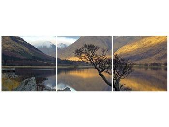 Obraz hor u jezera (F000686F12040)