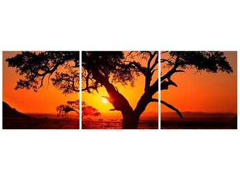 Obraz ohnivého západu slunce (F001288F12040)