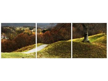Obraz podzimního pahorku (F001650F12040)