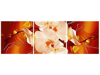 Obraz bílých orchidejí (F005694F12040)