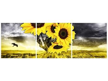 Moderní obraz F005873F12040 (F005873F12040)