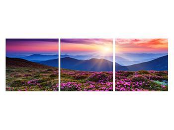Obraz horské rozkvetlé krajiny (K011322K12040)