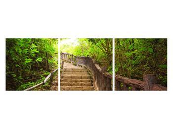 Tablou cu trepte ducând prin peisaj (K011329K12040)