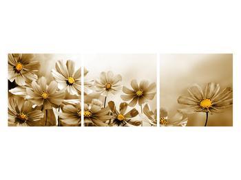 Obraz květů (K011484K12040)