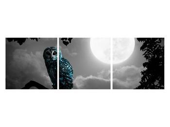 Tablou cu bufnița nocturnă (K012185K12040)