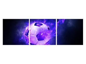 Tablou cu mingea de footbal în plasă (K014164K12040)