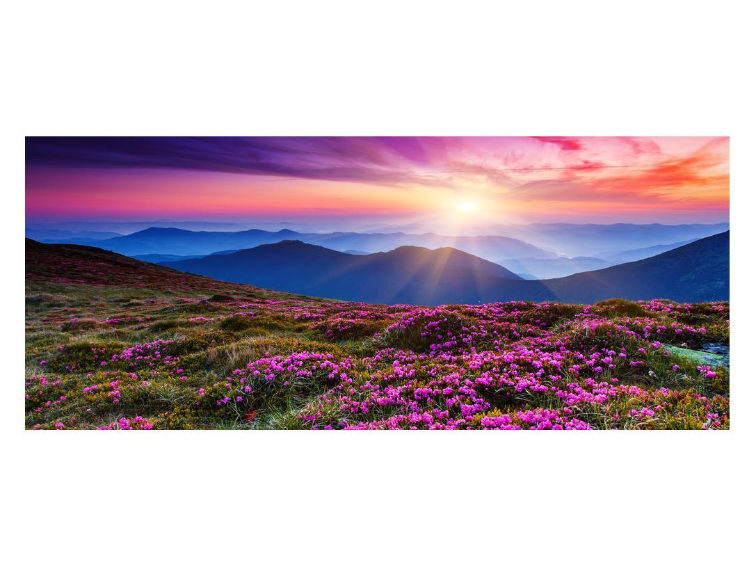 Slika planinskog rascvijetalog krajolika (K011322K12050)