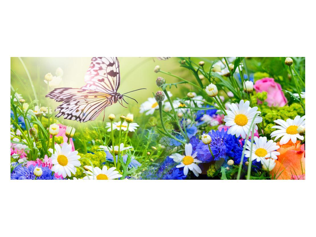 Slika poletnih cvetov z metuljem (K012220K12050)