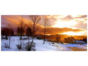 Obraz zimní krajiny (F000031F12050)