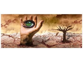 Obraz oka na dlaňi (F001485F12050)