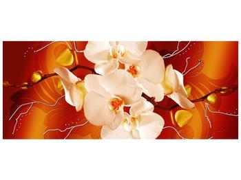 Obraz bílých orchidejí (F005694F12050)