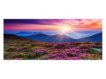 Tablou cu peisaj montan înflorit (K011322K12050)