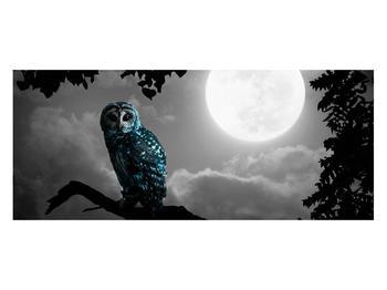 Tablou cu bufnița nocturnă (K012185K12050)