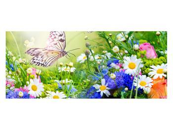 Obraz letných kvetov s motýľom (K012220K12050)