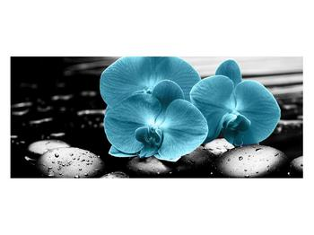 Tablou cu flori de orhidee albastre (K012398K12050)