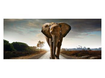 Tablou cu elefant (K012479K12050)