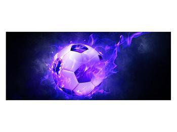 Tablou cu mingea de footbal în plasă (K014164K12050)